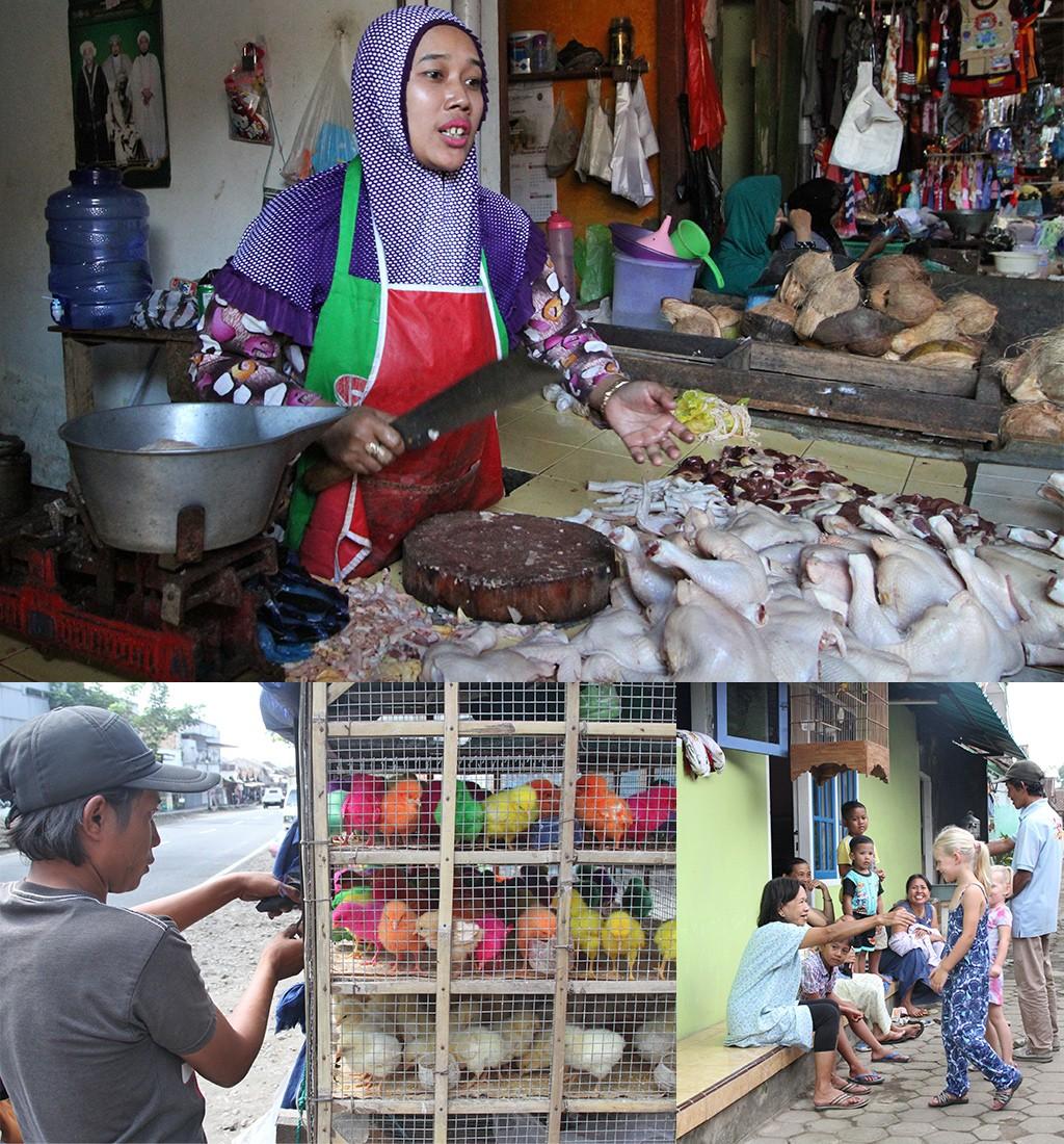 vakantiefoto's Indonesië