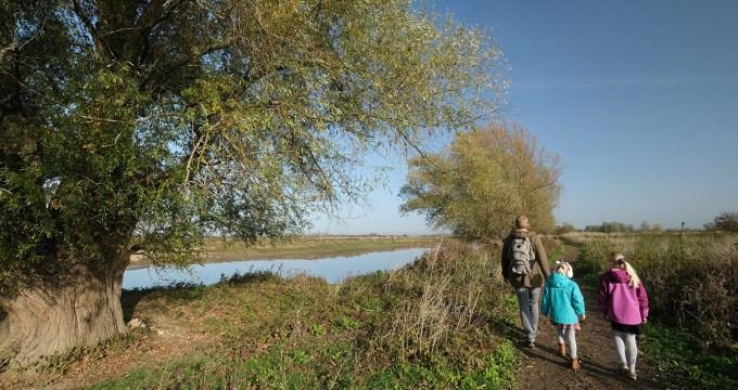 wandelen in de mooiste natuur rond Nijmegen