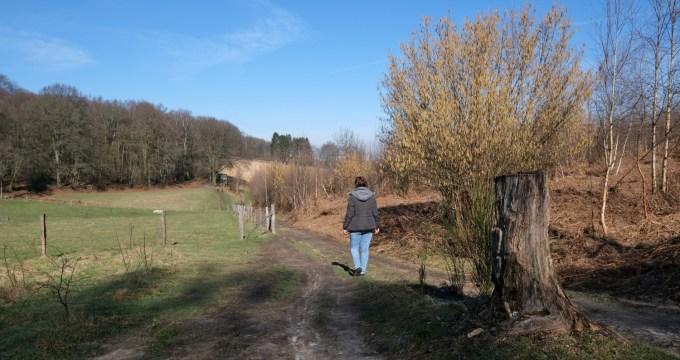 wandelen rond Vijlen in Zuid-Limburg