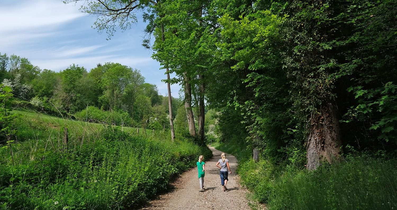 wandeling Valkenburg door natuur en langs kastelen