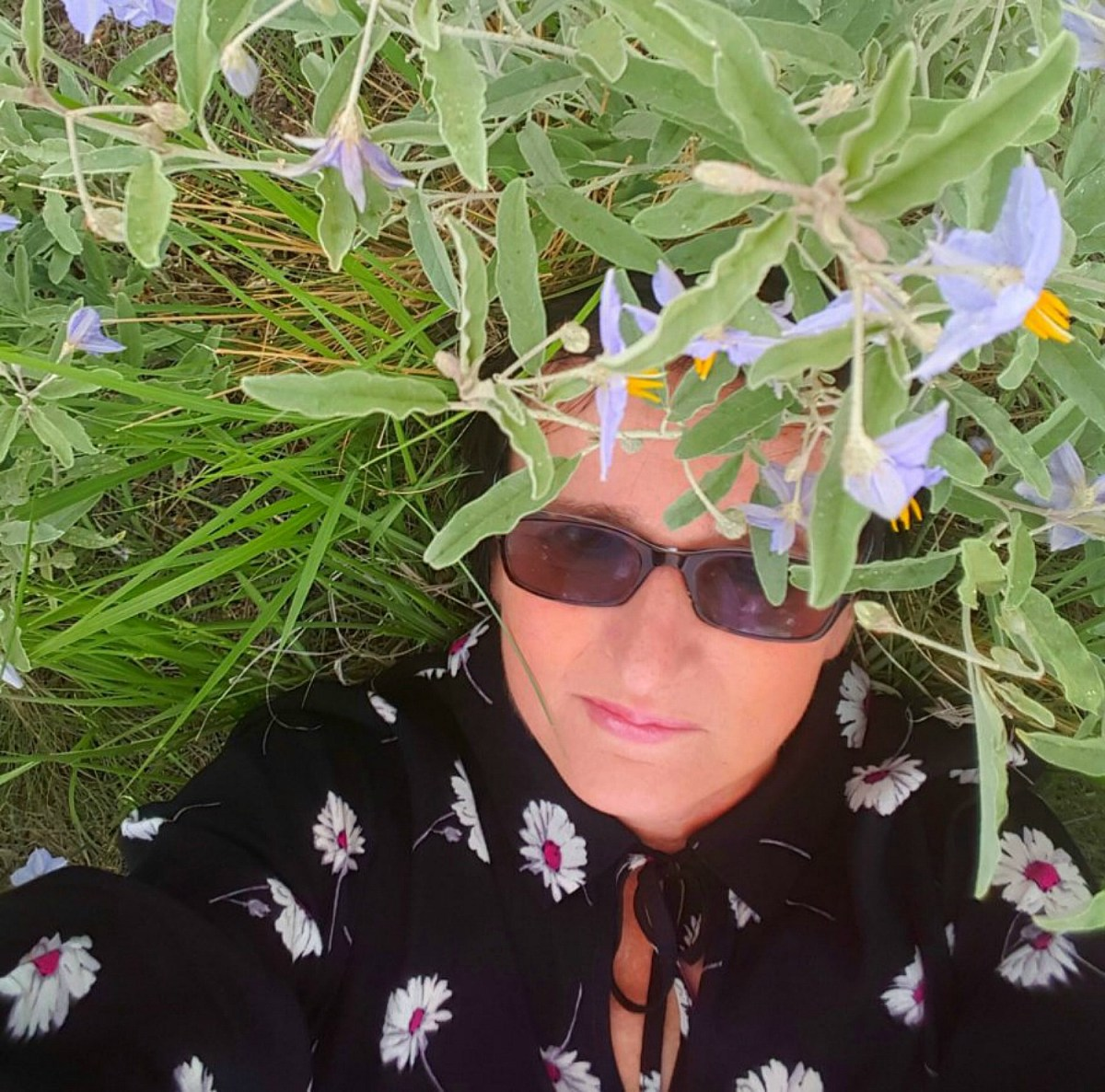 Living and traveling with cancer. Meadow in Arizona.