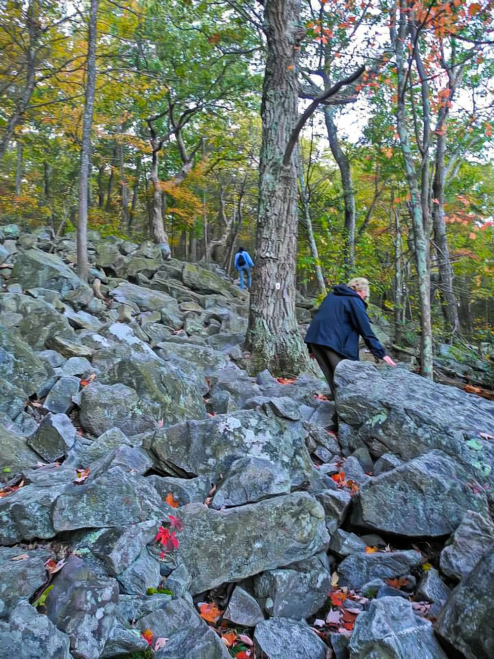 Mount Tammany trail that looks like a pile of rocks.