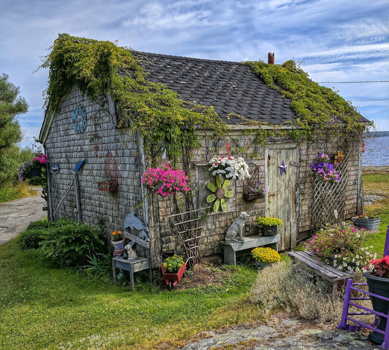 Old shack decorated with flowers in a fishing village in Nova Scotia.
