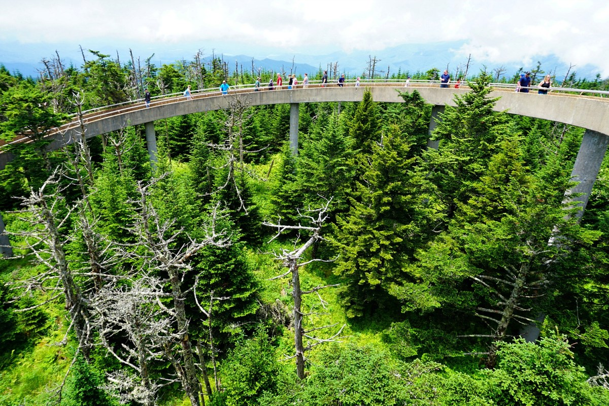 Climb Clingman Dome for unobstructed views of the mountains.