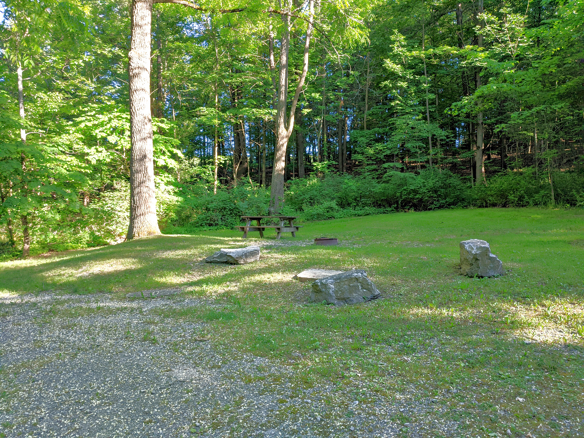 Camping spots at Taughannock State Park and large and inviting.