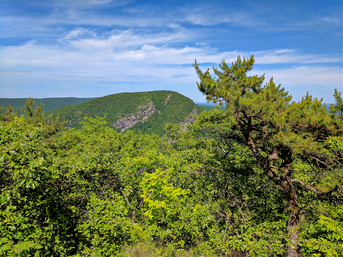 While hiking Mount Minsi you can get a glimpse of Mount Tammany on New Jersey side.