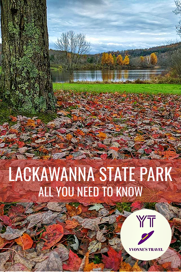 Lackwanna State Park, PA delivers peaceful retreat all year long.