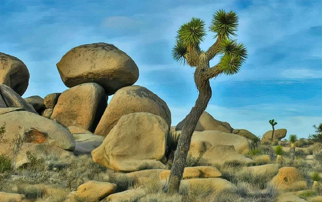 Best parks to visit in winter. Hidden Valley Nature Trail and Day Use Area in Joshua Tree National Park features Joshua Trees and huge boulders.