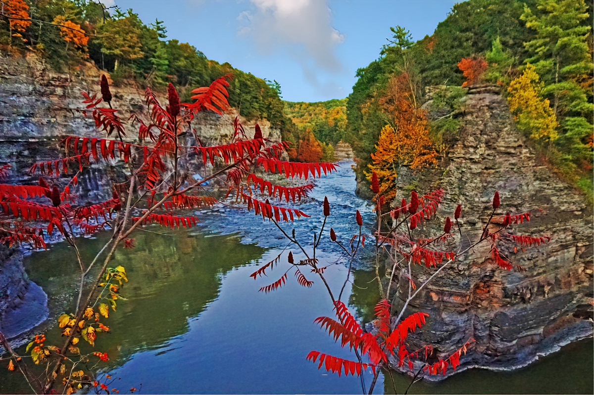 Genesee River Gorge in Letchworth State Park turns into a tunnel of color during the fall.