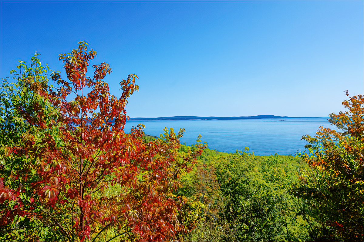 Fall foliage in Bar Harbor, Maine.