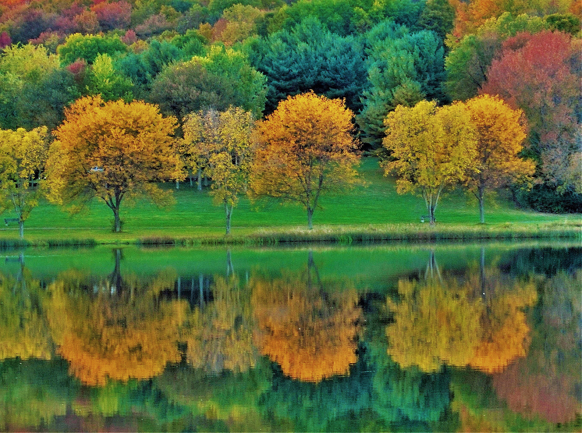 Best places to find fall foliage. The Northeast delivers beautiful fall scenery anywhere you turn.