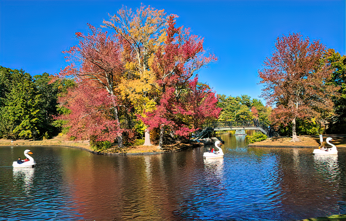 Best things to do in Providence, RI. Families love Roger Williams Park.