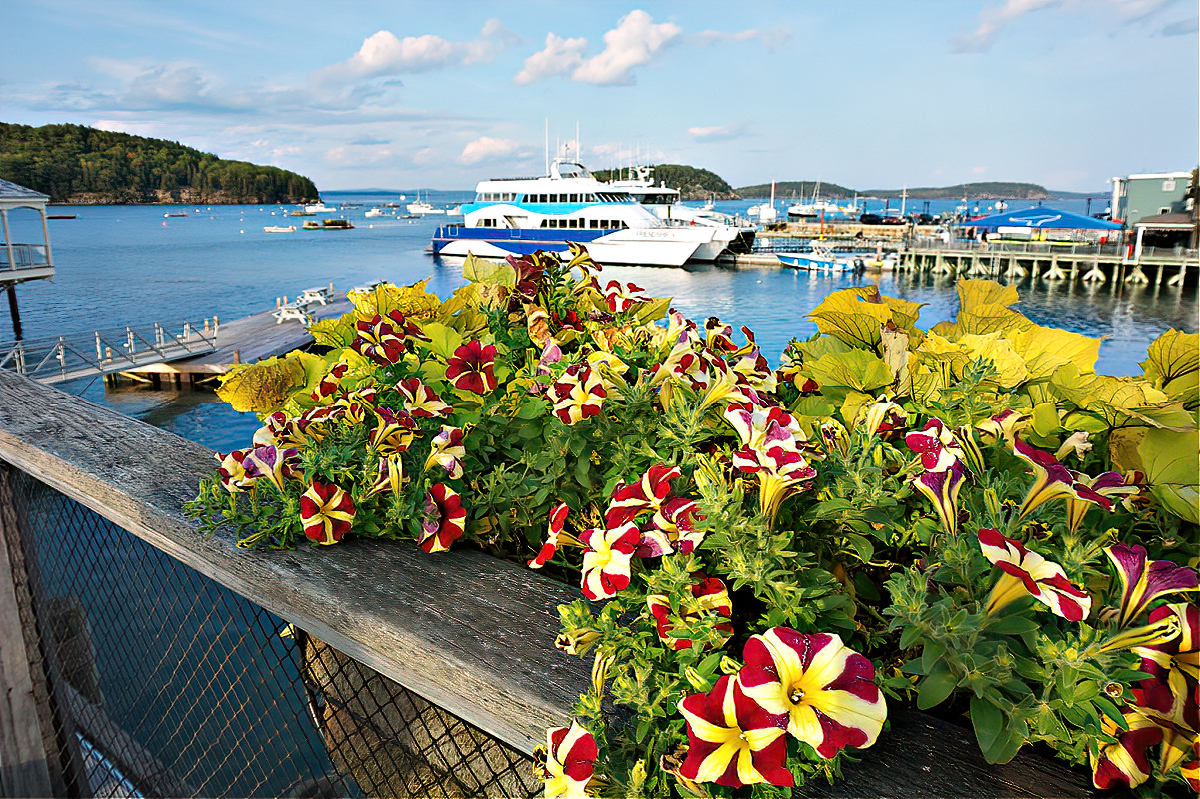 You should consider Bar Harbor a destination on its own, especially if you love lobster.