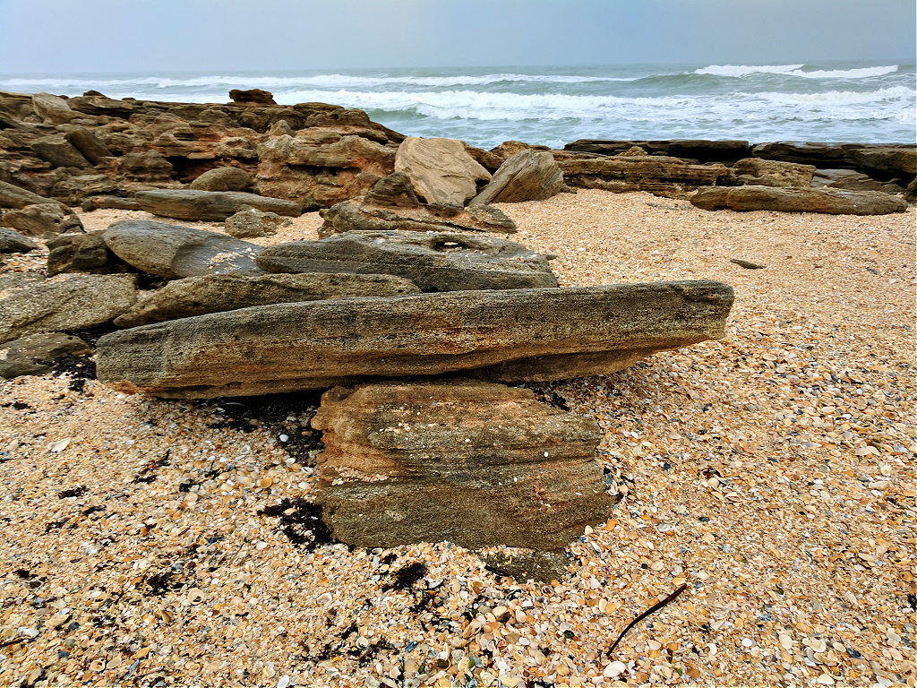Unique coquina rock formations at Washington Oaks Gardens State Park.
