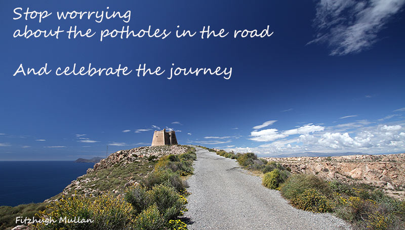 stop worrying about the potholes in the road and celebrate the journey - Fitzhugh Mullan