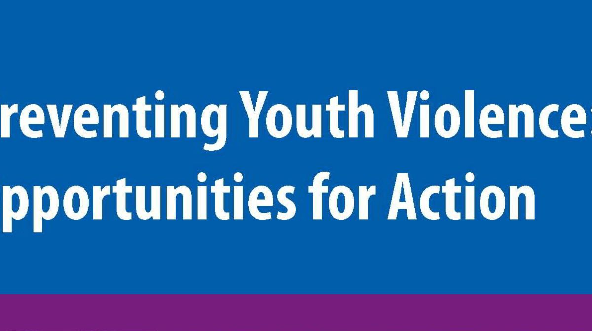 Cdc Releases New Package For Prevention >> Cdc Releases New Opportunities For Action Guide Michigan Youth