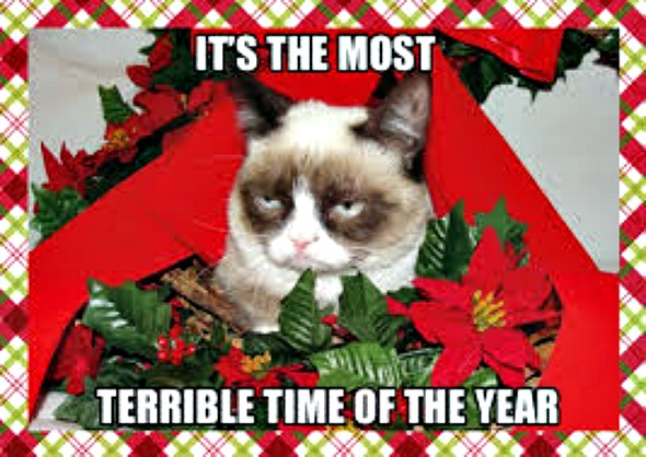 Grumpy Cat Christmas.Shoot Grumpy Cat S Worst Christmas Ever Films In Coquitlam