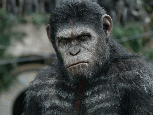 spark dawn of planet of the apes