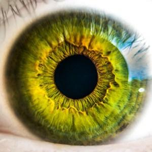 eye, eyeball, green