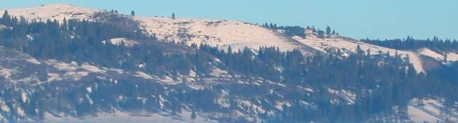 Hügel um Kamiah im Winter