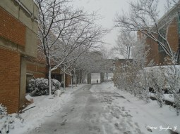 A walk to class while trying my best not to slip on a snowy and stormy day.