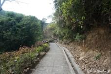 path-9