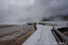 Yellowstone road 5