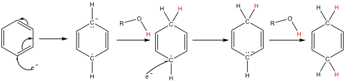 Mechanismus Birchovy redukce