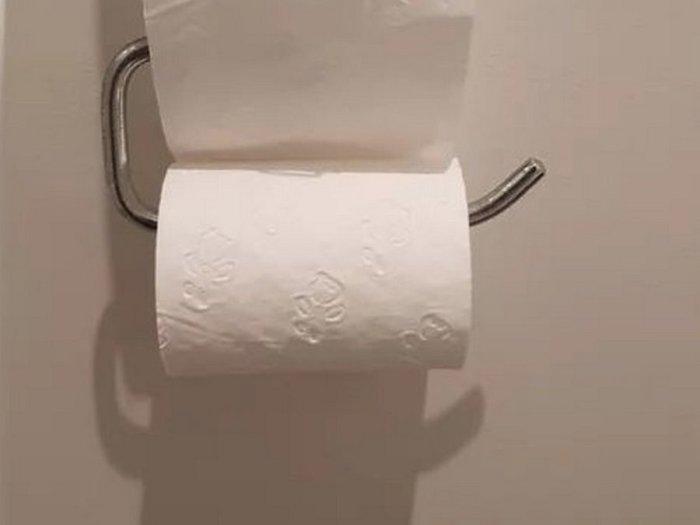 В Австралии в туалет даже просто так не сходишь