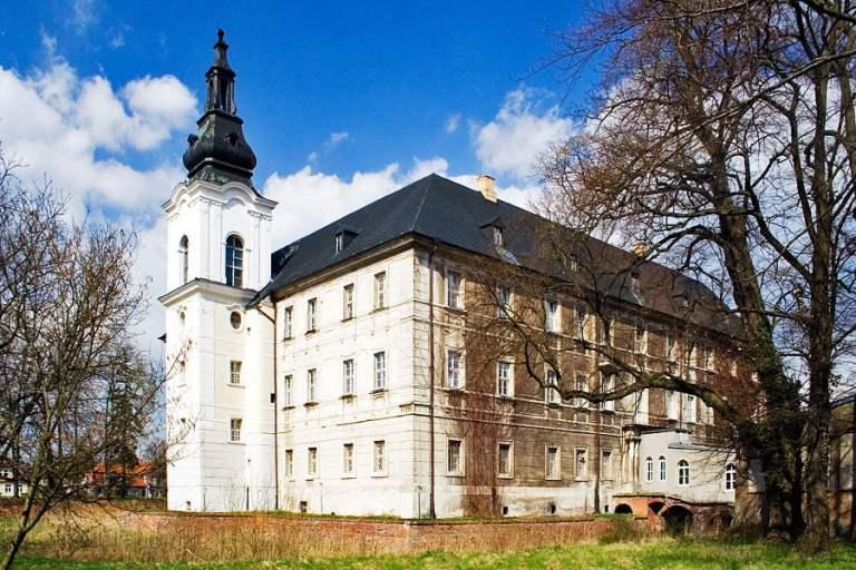 zamek w Zaborze