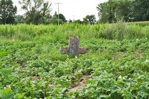 Krzyż kamienny w Harthausen