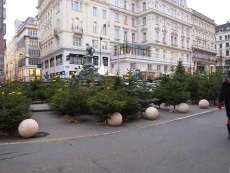 Christmas tree lot!