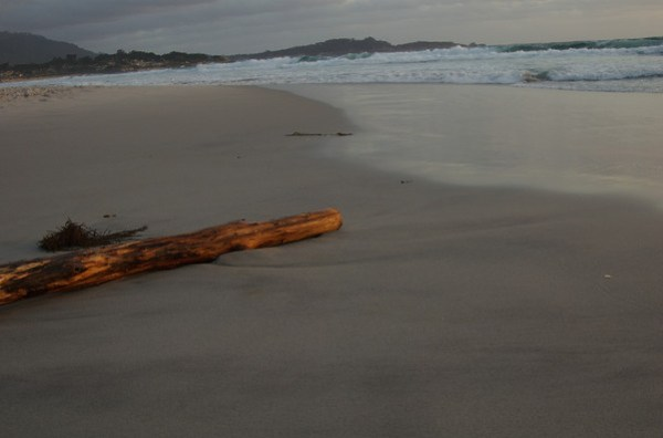 This picture shows the same log with more foreground. I think the color of the log really makes it stand out.