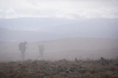 Wandering through the Fog