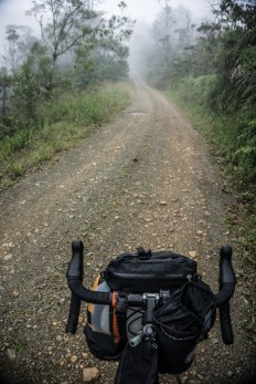 Riding into Clouds in the Rainforest
