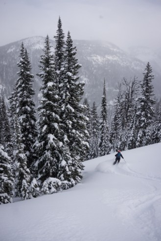 Powdery Goodness in the Headwaters of the North Fork of the Flathead