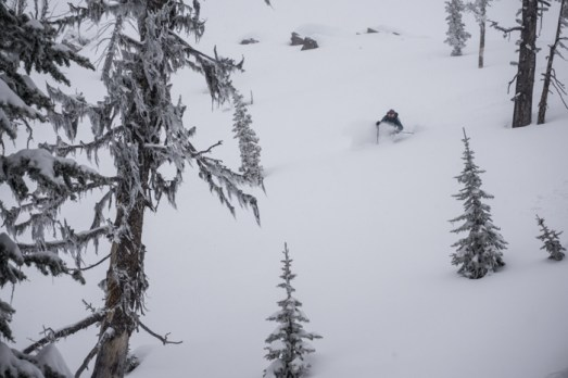 Katie Finding Some Deep Snow