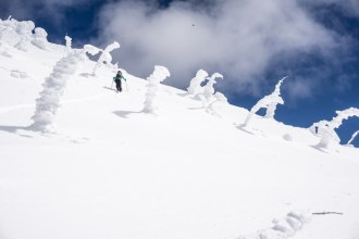 Snow Ghosts Saying Hello