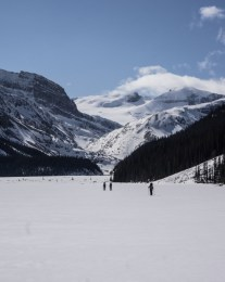 The Wapta Icefield Ahead