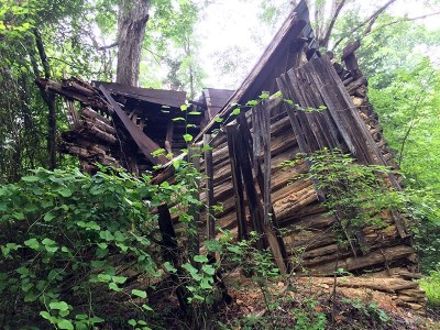 Abandoned-Tobacco-Shed