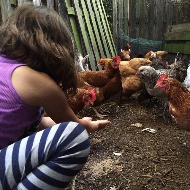 """#Meliamae: """"Hey Nonnie, whenever I come over I can be your little chicken girl."""""""