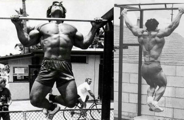 Image result for bodybuilding pull up