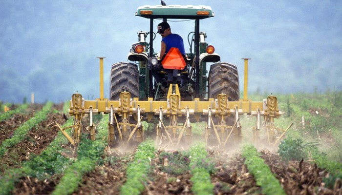 Darowizna gospodarstwa rolnego a zachowek