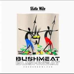Shatta Wale - Bushmeat (Prod. By PAQ)