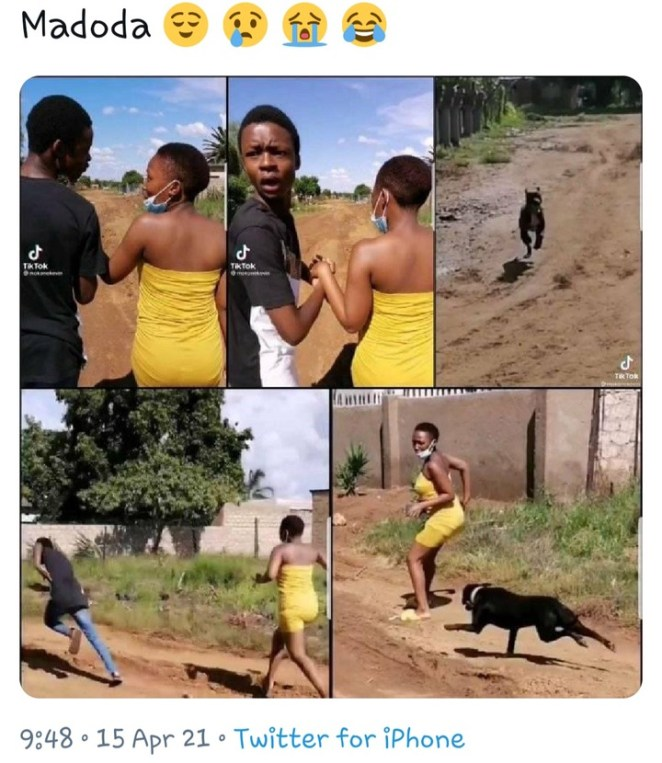 Yawa As Young Man Ran Away Leaving His Girlfriend To Be Attacked By A Dog [WATCH]