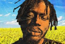 Download/Listen: Mr Eazi – Baby I'm Jealous Ft King Promise (Prod. by GuiltyBeatz)