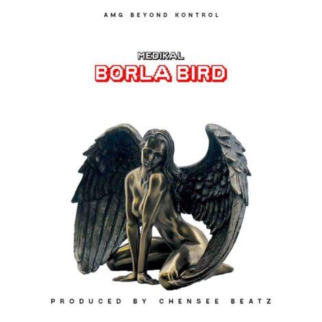 DOWNLOAD MP3: Medikal – Borla Bird (Prod. By Chensee Beatz)