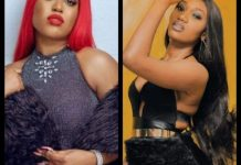 GIST : Wendy Shay is a local champion – Fantana
