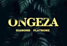 DOWNLOAD MP3: Diamond Platnumz – Ongeza (Prod. by Lizer Classic)