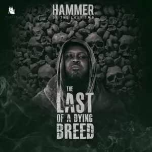 Hammer of The Last Two – Remember Ebony Ft Shatta Wale, Obrafour, Worlasi, Poetress x Abeiku Santana